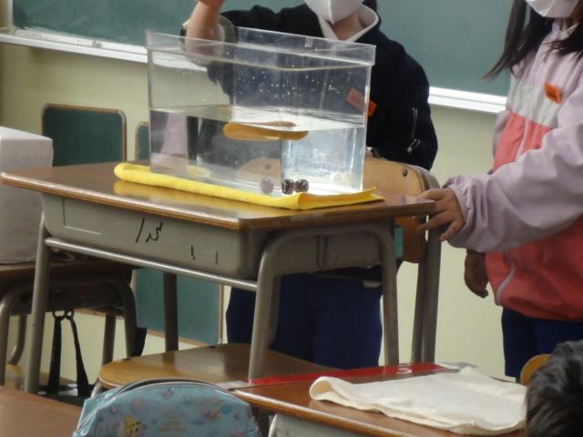 神戸市立なぎさ小学校さまでおなか元気教室を開催いたしました。